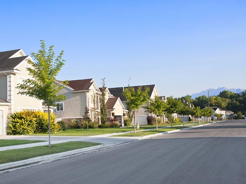 quiet street in suburb neighborhood
